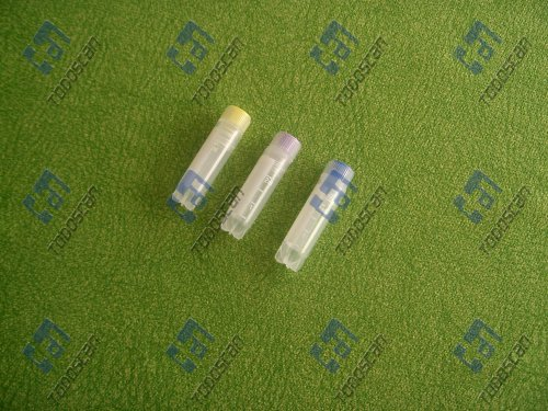 2ml Freezing Tube
