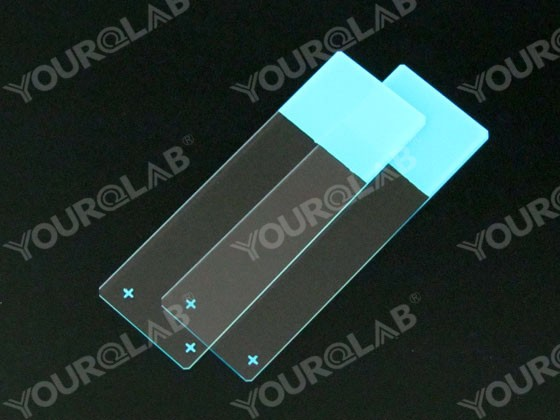 Glass Slide Polished Edges